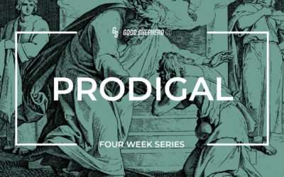 Prodigal, Part 3 – Your Role In A Prodigal World