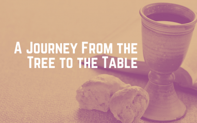 A Journey From the Tree to the Table